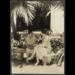 1928 Doris Stevens, right, talking to Sra. Gonzales at Pan-American Conference, Havana, Jan. 1928